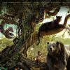 Poster of the film The Jungle Book | The Jungle Book Posters