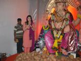 Hansika Motwani at Andheri Ka Raja Ganpati at Andheri, in Mumbai