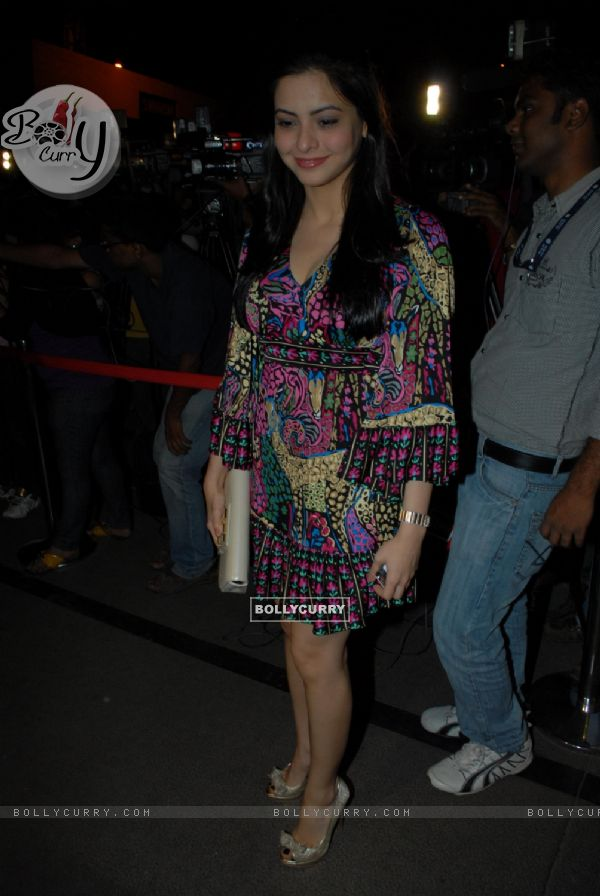 Aamna Shariff at Nikhil Dwivedi's wedding Reception party at Escobar