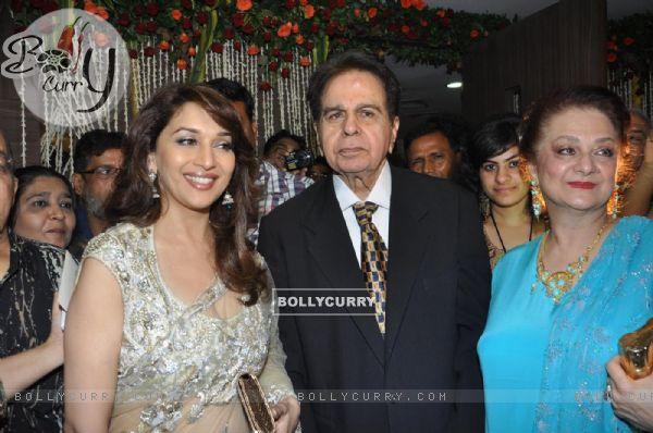 Madhuri Dixit, Dilip Kumar and Saira Banu at wedding reception party of Dr.Abhishek and Dr.Shefali