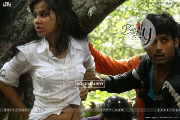 Nitin Reddy and Nisha Kothari in Agyaat movie (20388)