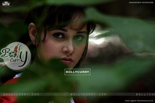 Nisha Kothari looking gorgeous (20398)