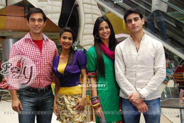 Dimple Jhangiani , Kushal Punjabi , Gautam Rode and Mala Salariya