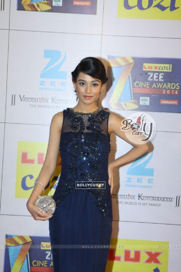 Zee Cine Awards 2014
