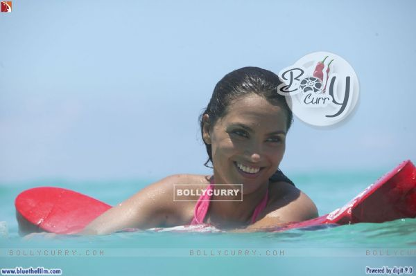 Lara Dutta in Blue movie