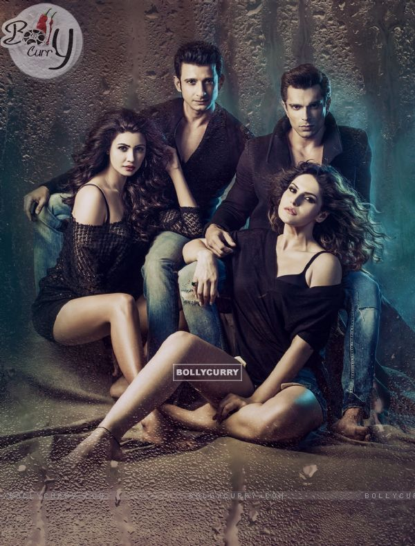 Hate Story 3 (384886)