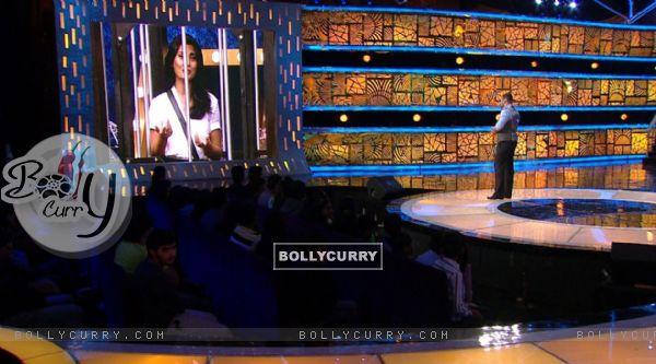 Bigg Boss 9 Nau: Day 41- Rimi Sen in Custody - Salman Watches on Big Screen