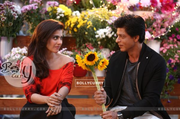 Shah Rukh Khan offers Sunflowers to the Beautiful Kajol - A Still from Dilwale