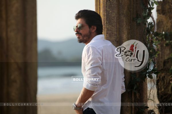 A Still of Shah Rukh Khan in Dilwale (387390)