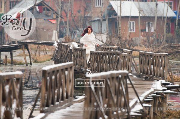 A still of Katrina Kaif in Fitoor (390204)