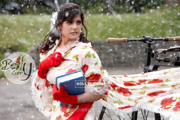 A still image of Zarine Khan