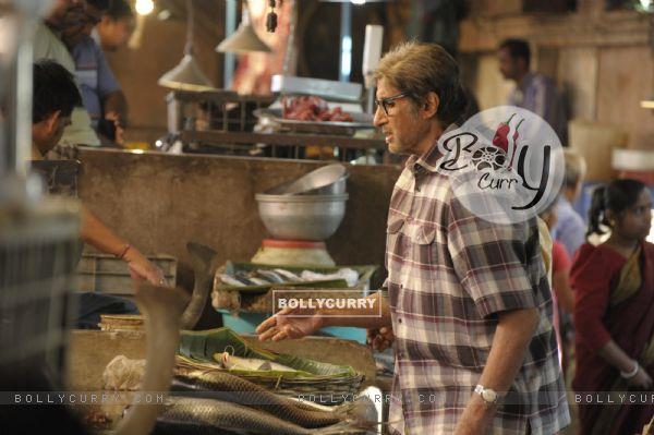 Amitabh Bachchan as John Biswas TE3N (401219)