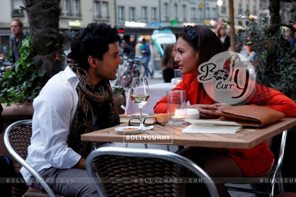 Rajeev Khandelwal and Gauahar Khan in Fever (410744)