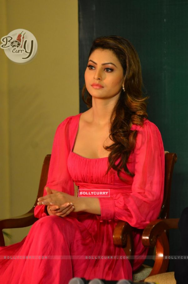 Urvashi Rautela at Press meet of 'Grand Masti' on Piracy Issue (412471)