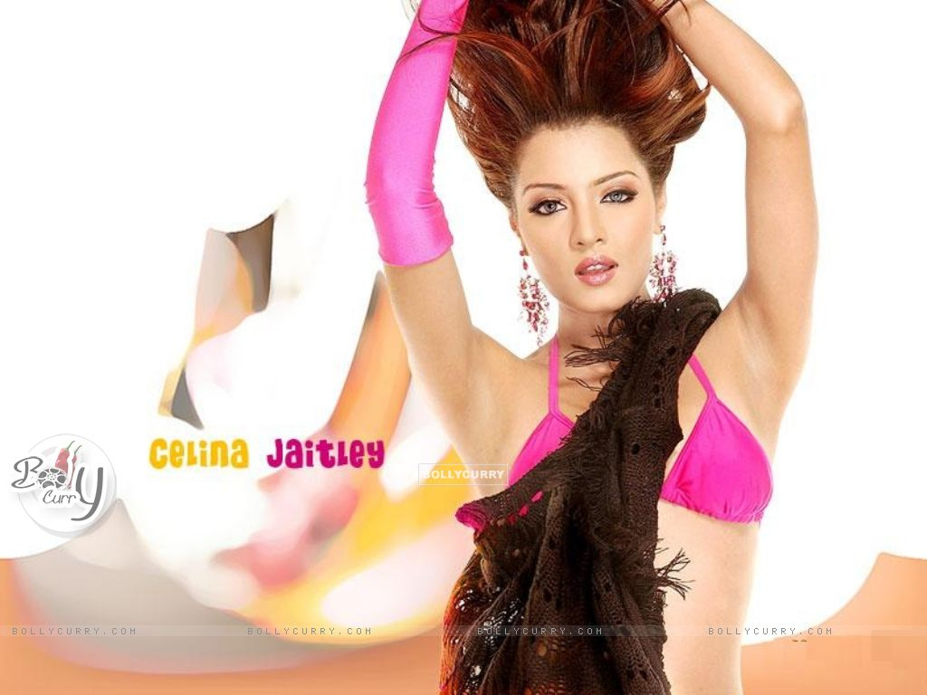23944-celina-jaitley.jpg on celina jeitaly nude and fuck no. 13 ...