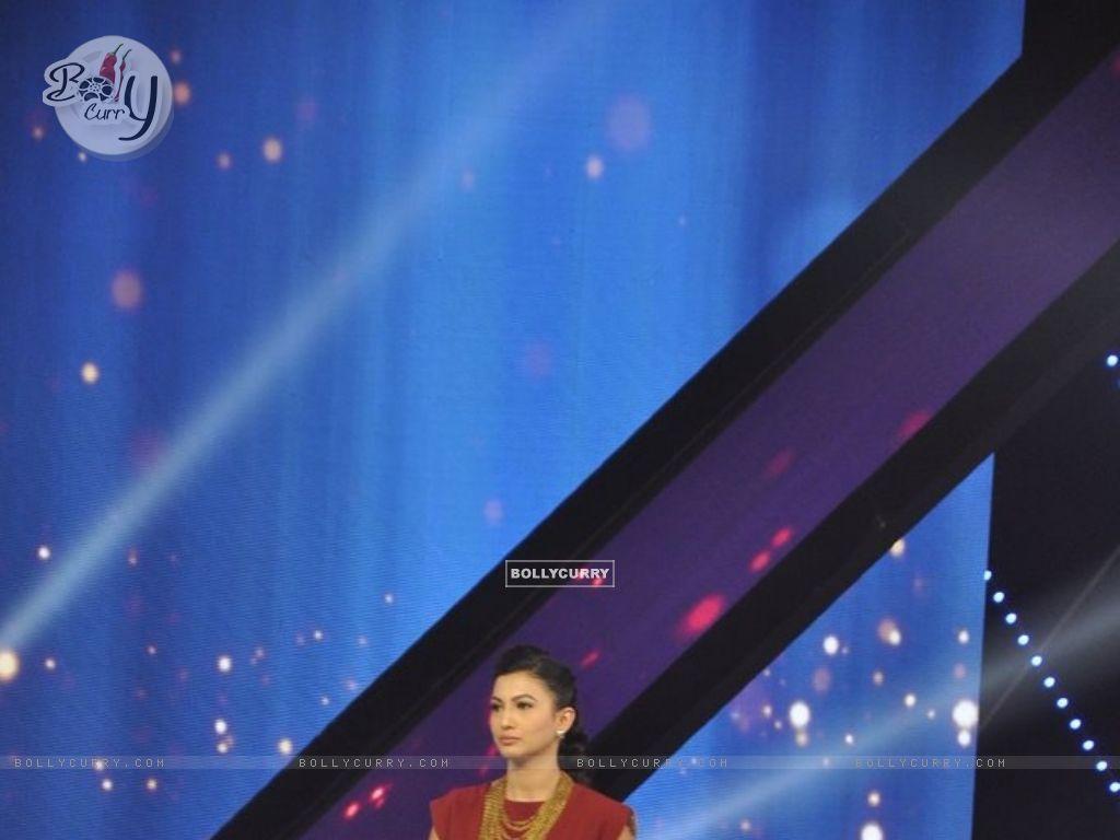 India's Raw Star (337382) size:1024x768