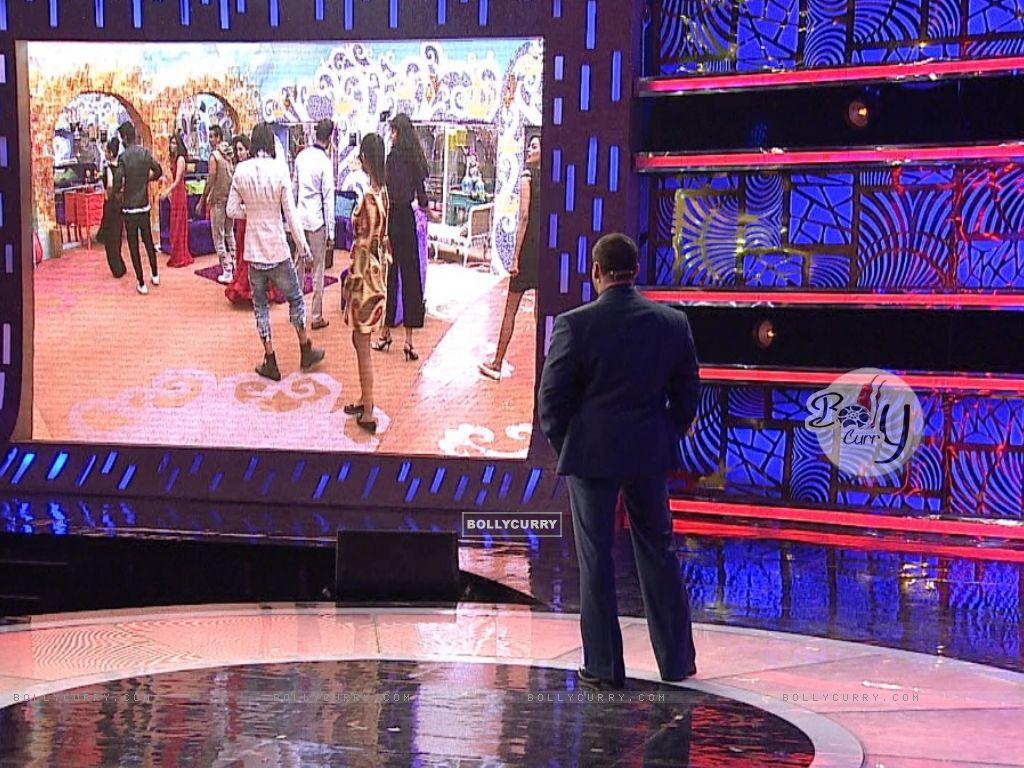 Bigg Boss 9 Nau: Day 77 - Salman Khan Watches BB9 contestants (389471) size:1024x768