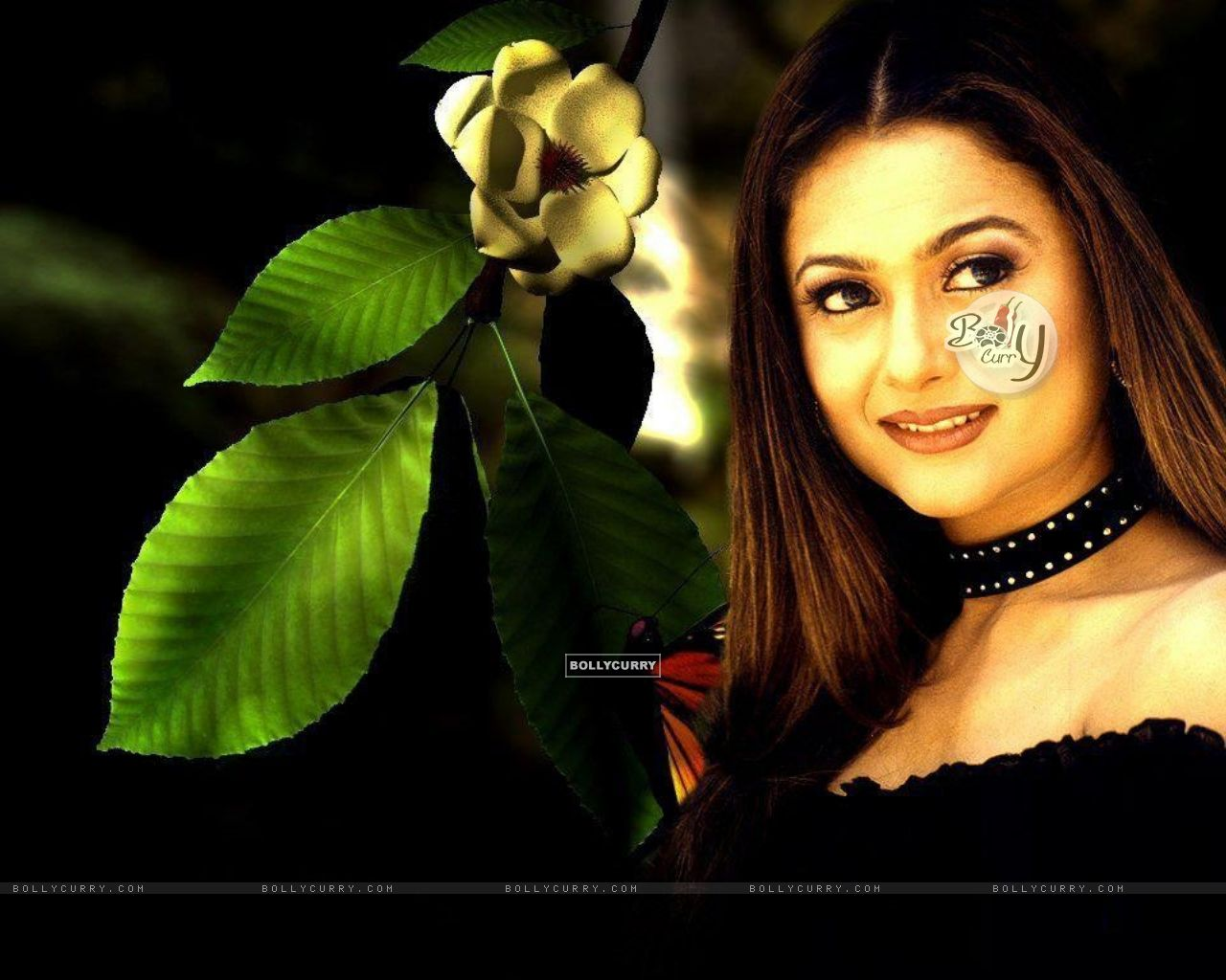 Amrita Arora - Photo Set