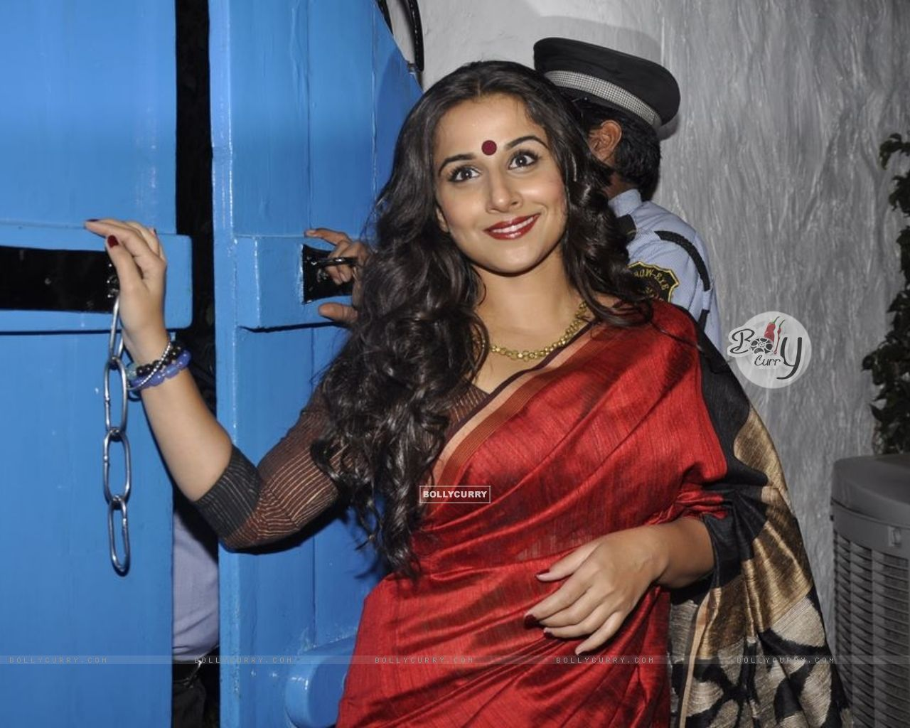 Wallpaper Sized images of Vidya Balan grace Dabboo Ratnani Calendar ...