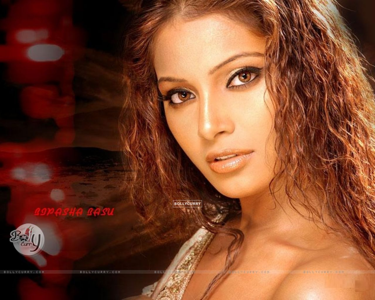 BD Actress Purnima Best Photo Gallery - Filmnstars