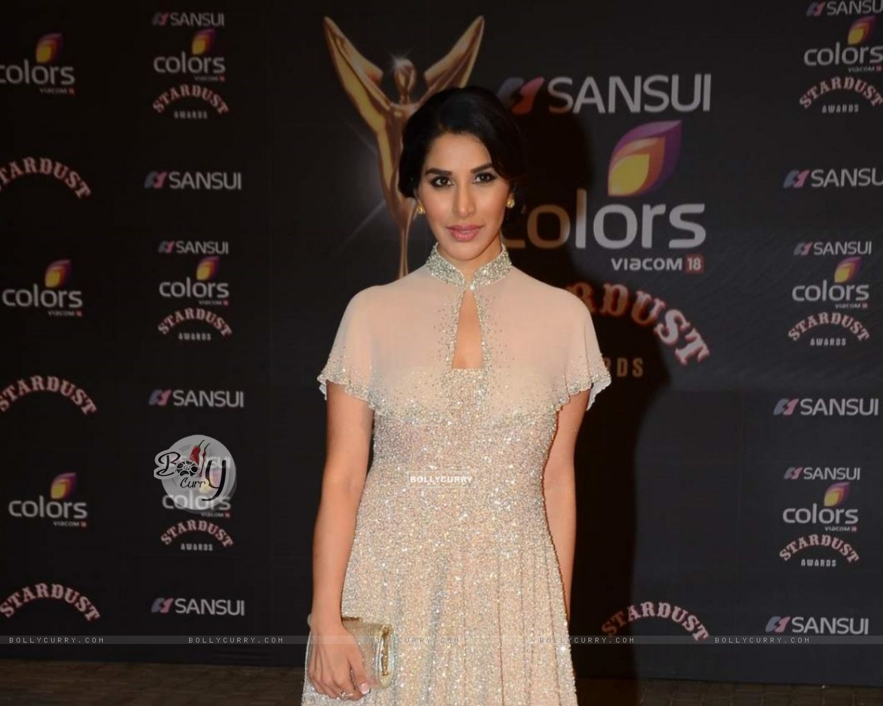 Sophie Choudry (388830) size:1280x1024