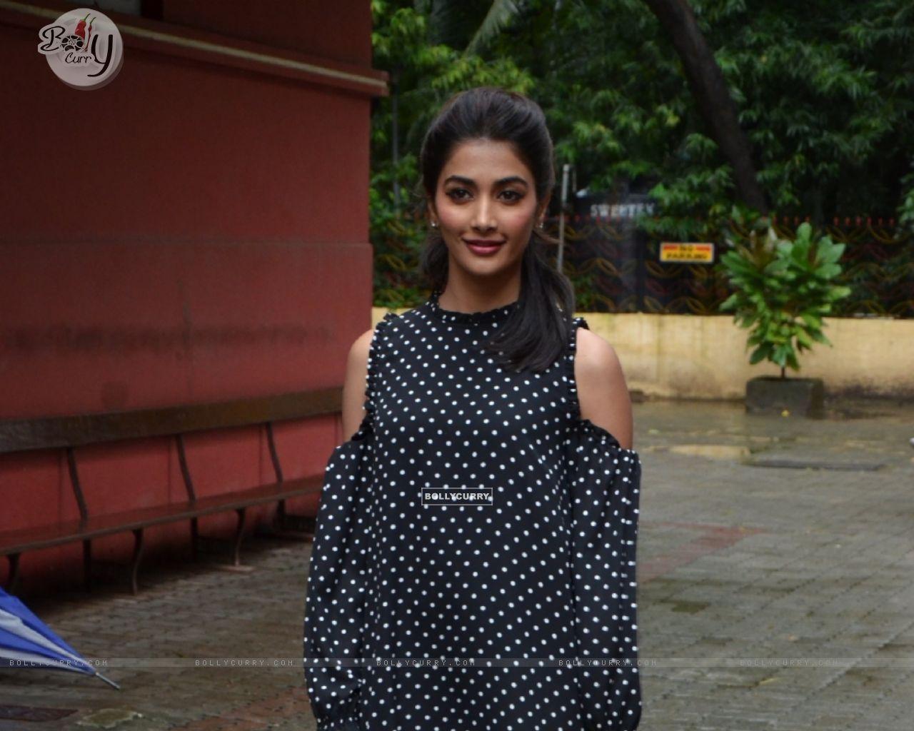 Pooja Hegde (414443) size:1280x1024