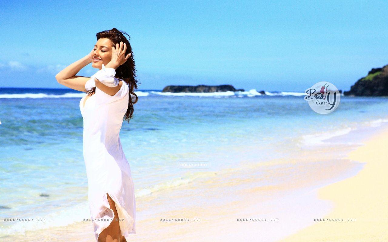 Minissha Lamba looking gorgeous (20421) size:1280x800