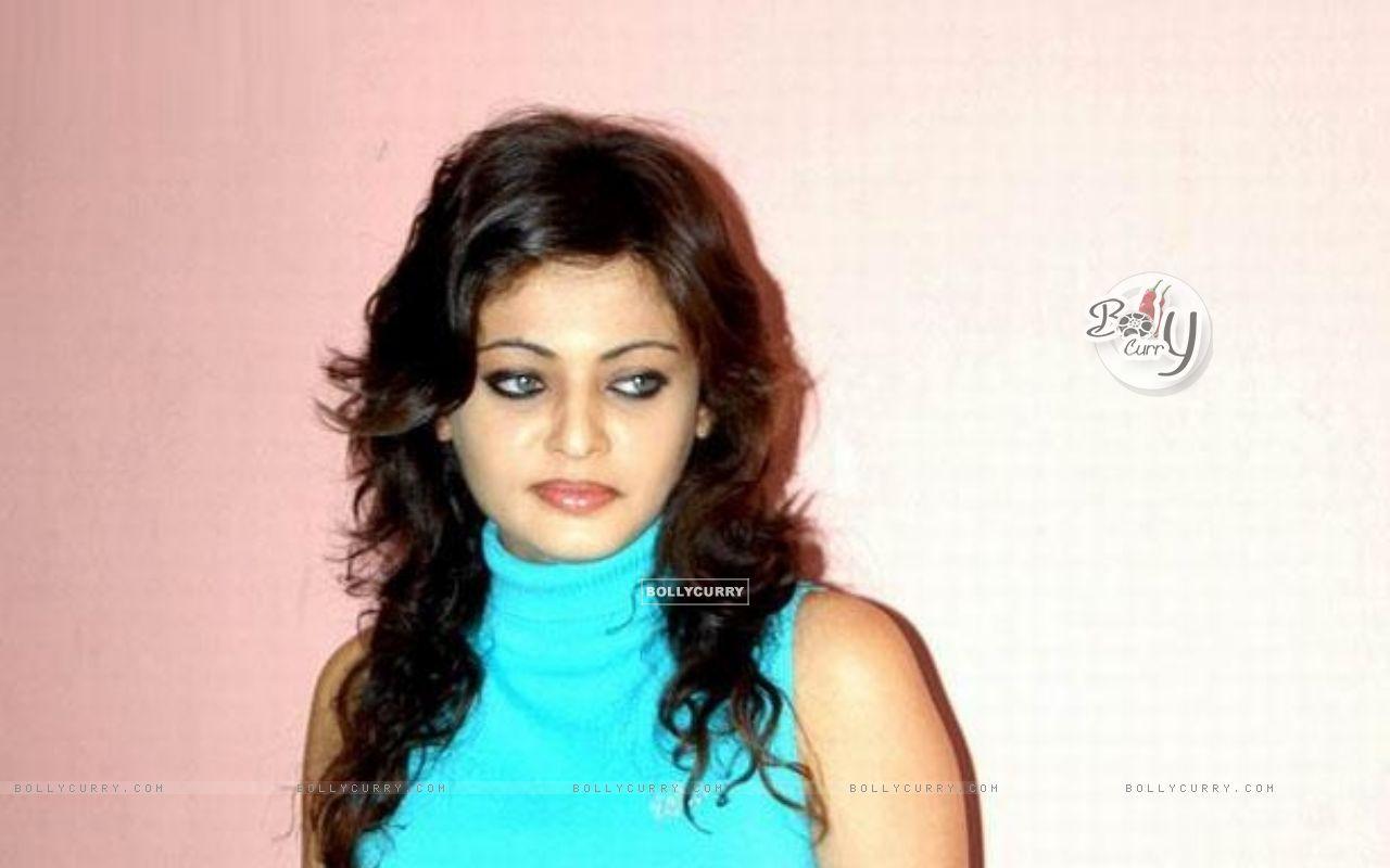 Sneha Ullal - Photo Actress