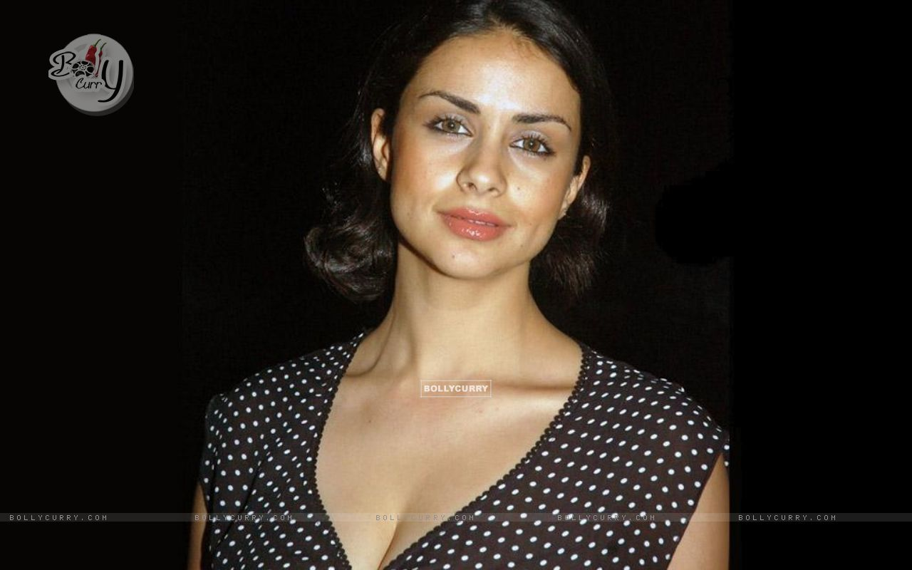 Gul Panag - Gallery Photo