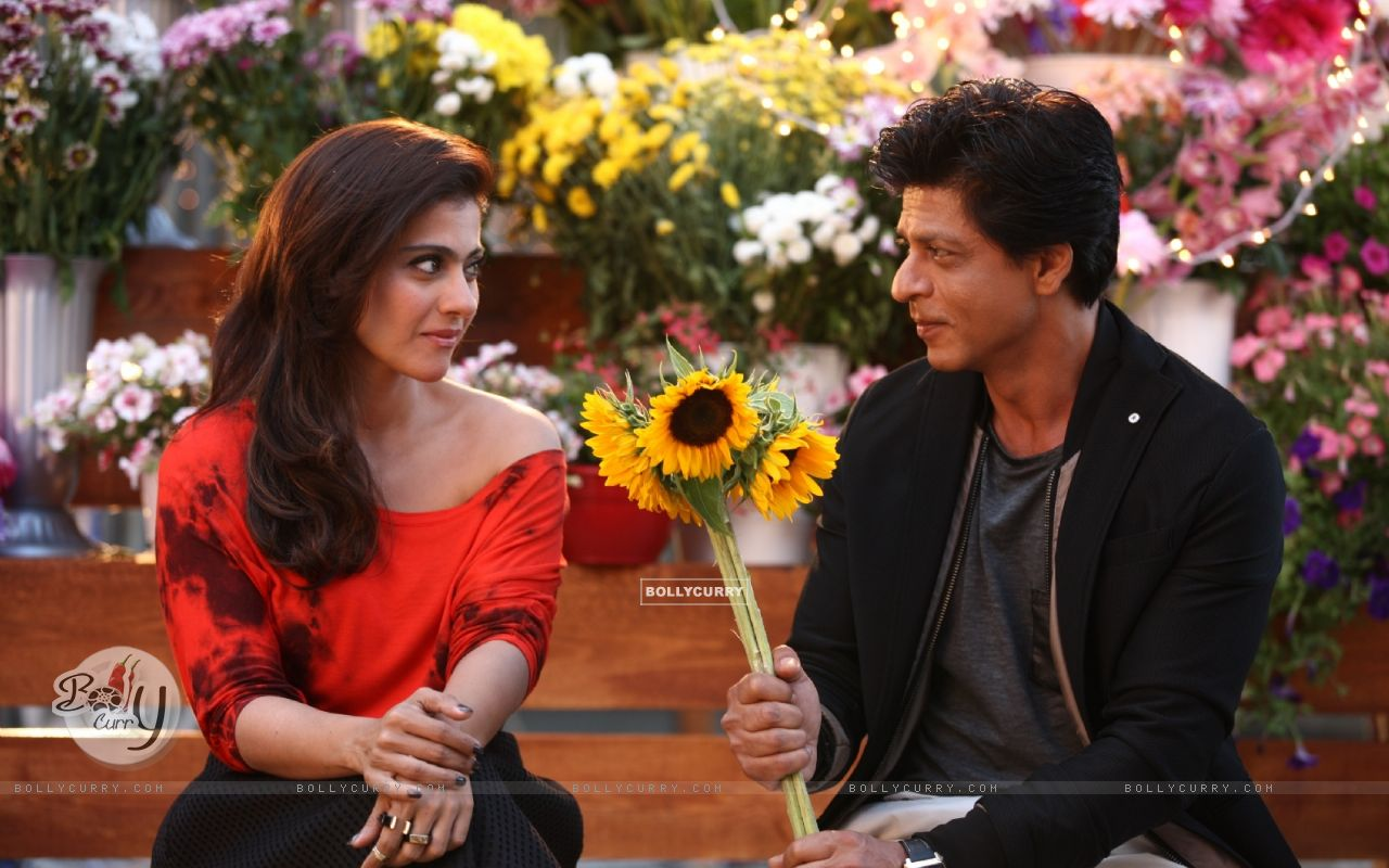 Shah Rukh Khan offers Sunflowers to the Beautiful Kajol - A Still from Dilwale (387388) size:1280x800
