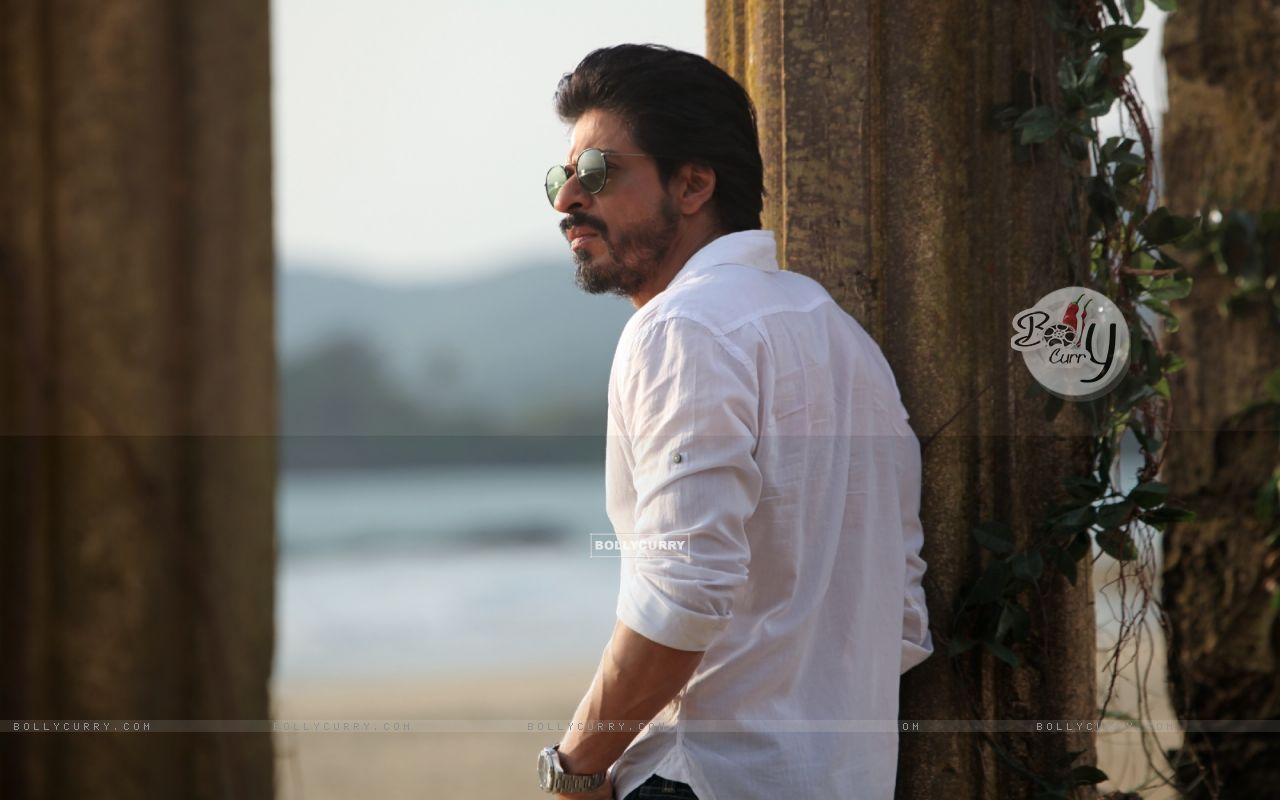 A Still of Shah Rukh Khan in Dilwale (387390) size:1280x800