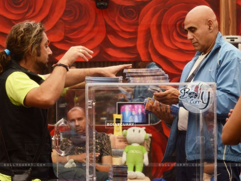 Contestants performing the second part of the task Kabhi Haa Kabhi Naa on Bigg Boss 8 (348897) size:800x600