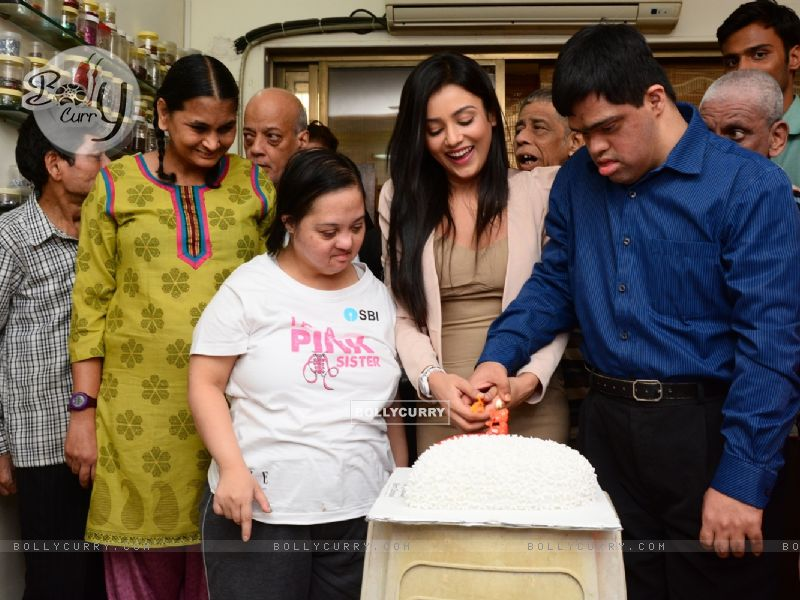 Mishti Chakraborty Cuts her Birthday cake (349215) size:800x600