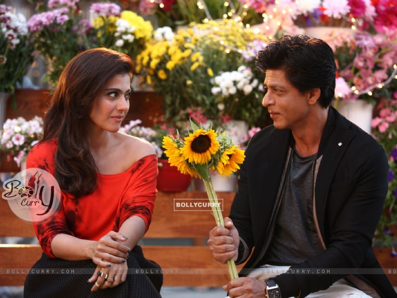 Shah Rukh Khan offers Sunflowers to the Beautiful Kajol - A Still from Dilwale (387388) size:800x600