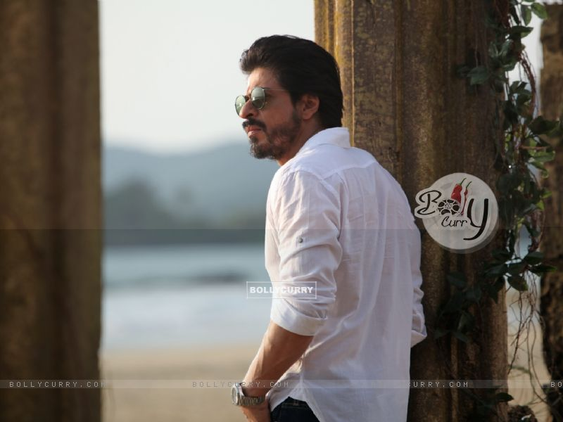 A Still of Shah Rukh Khan in Dilwale (387390) size:800x600
