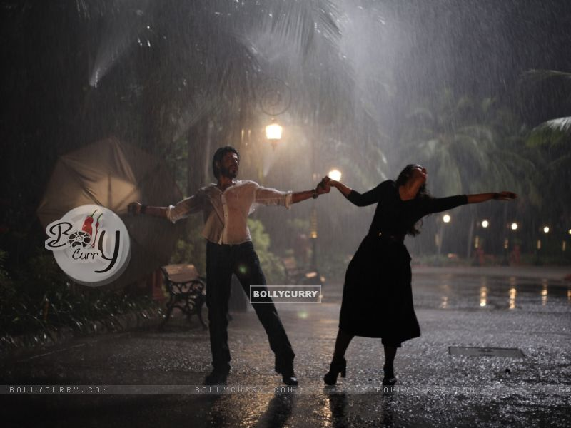 Shah Rukh Khan and Kajol: Rain Dance - A Still from Dilwale (387392) size:800x600