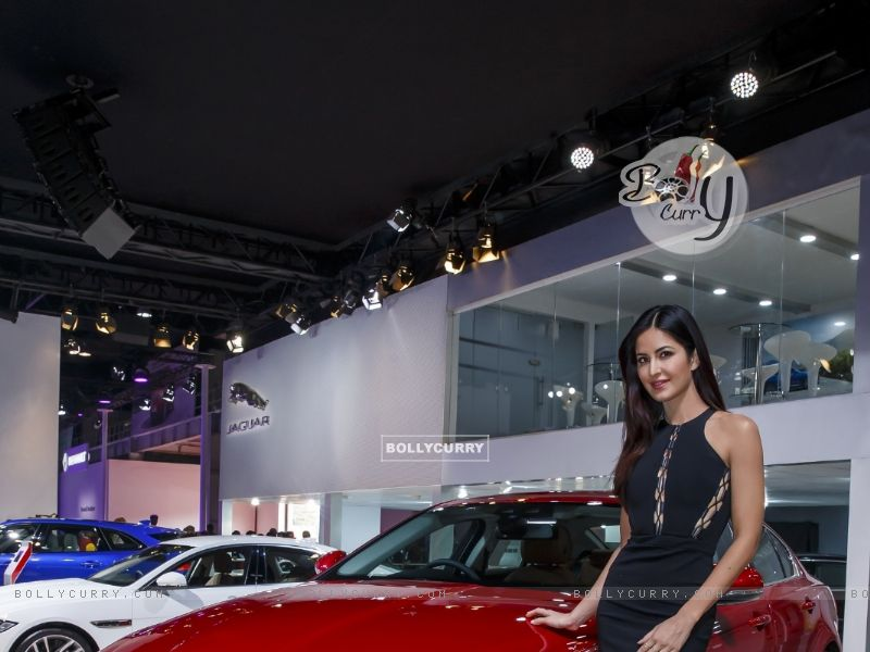 Katrina Kaif at Jaguar's Launch at Auto Expo 2016 (394424) size:800x600