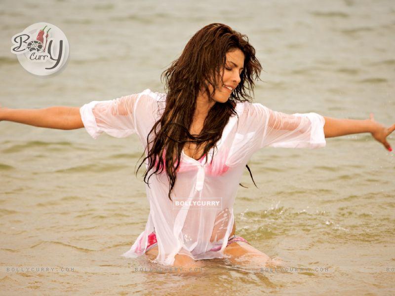 Priyanka Chopra looking hot (40375) size:800x600