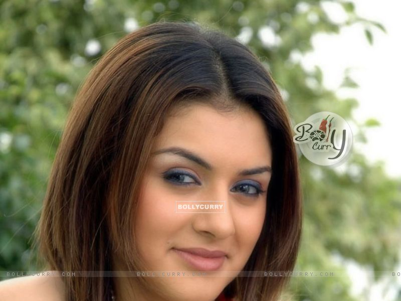hansika wallpaper. Hansika Motwani wallpaper