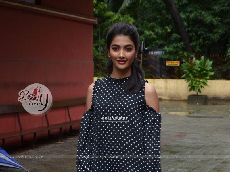 Pooja Hegde (414443) size:800x600